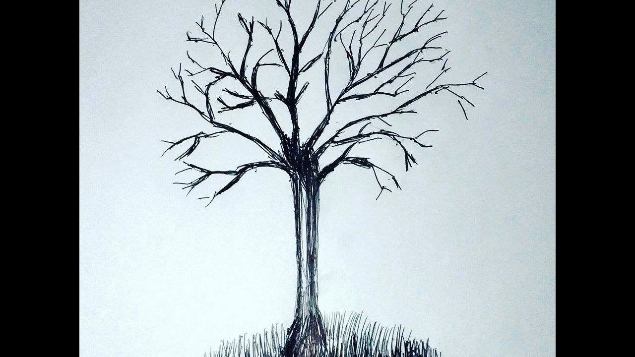 Uncategorized How To Draw Leaves On A Tree how to make simple tree without leaves youtube leaves