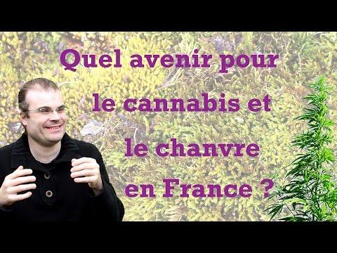 Quel avenir pour le cannabis et le chanvre en France ?