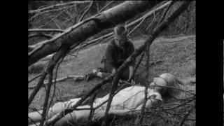 The Virgin Spring - Tiger Mountain Peasant Song (Fleet Foxes)