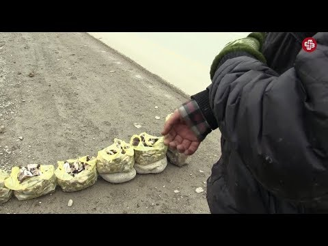 Azerbaijan's children: no birth certificate, no right to education