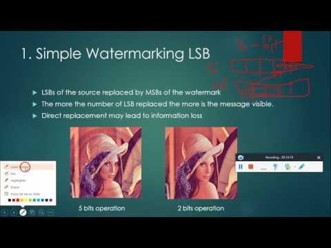 IT 468: Digital watermarking using DNA computing