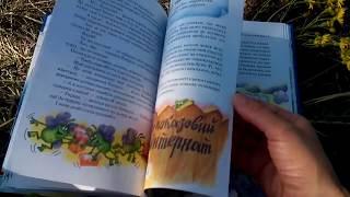 Е.Чеповецкий Невероятные приключения Мякиша, Нетака и Непоседы, издательство Школа