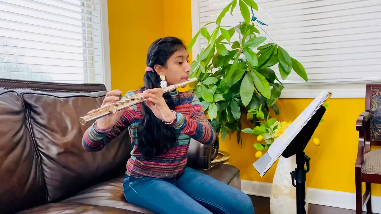 Flute Lessons For Professionals And Amateurs By Skype