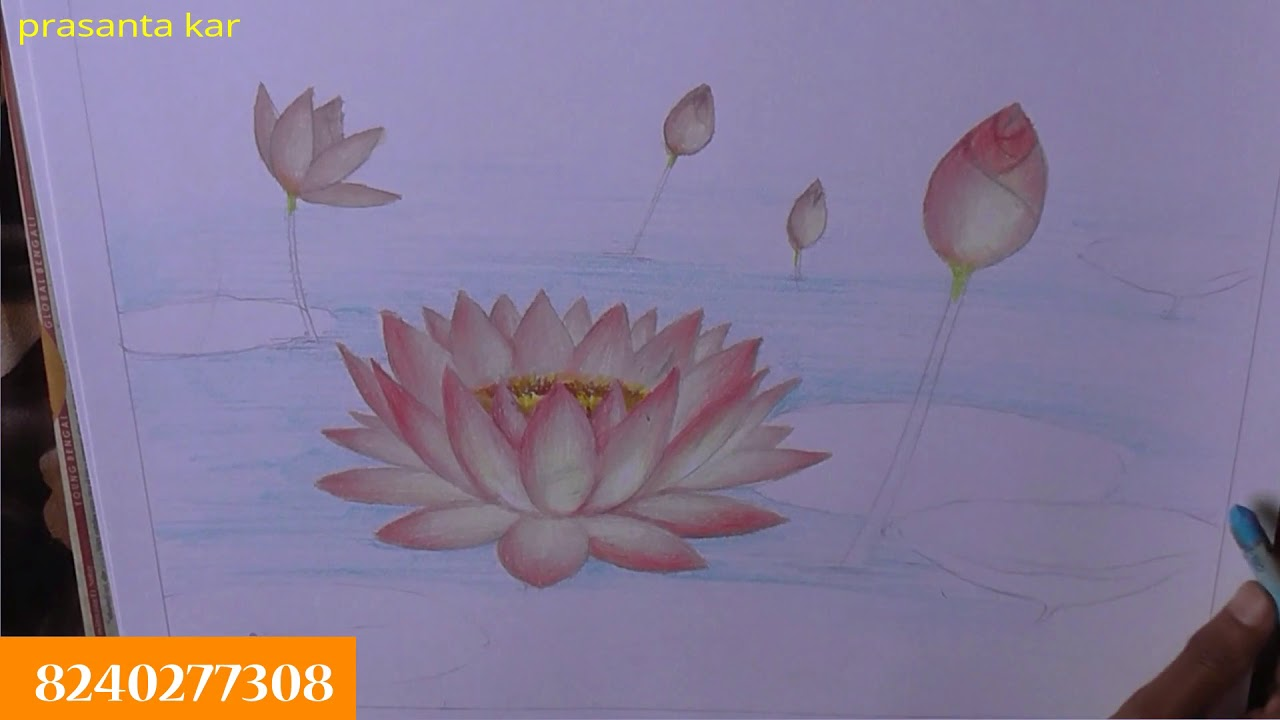 How To Paint Lotus Flower Oil Pastels Oil Pastel Painting