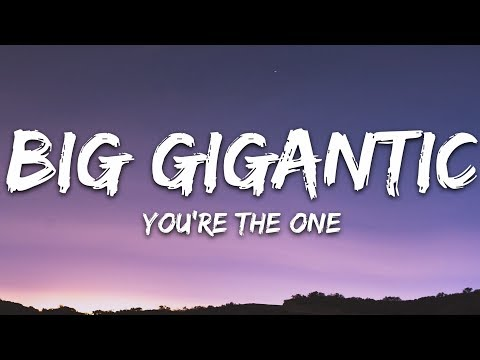 Big Gigantic - You're The One  feat Nevve