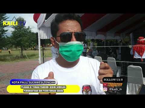 Pilkada Era Pandemi ; Ini Cara Pungut & Hitung Suara
