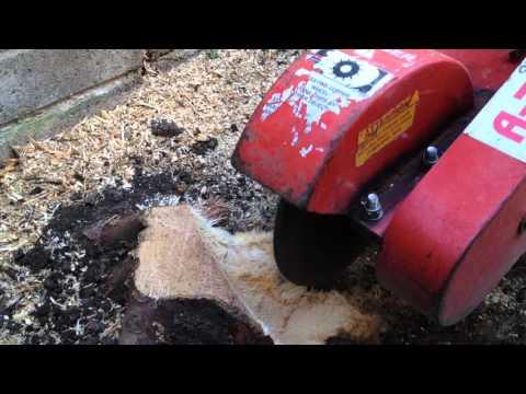 Rayco 13 hp stump grinder