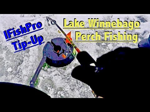 Ice Fishing Lake Winnebago Perch with the IFishPro Tip-Up!!!