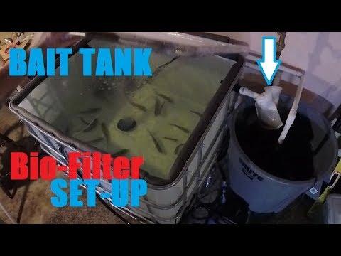 DIY Bait Tank & BioFilter Setup - Sucker Minnows For Musky And Flathead