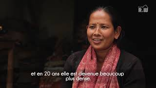 Rock'n Wood - Hors Série - Saison 3 #3 : La forêt au Népal, une ressource illimitée ?