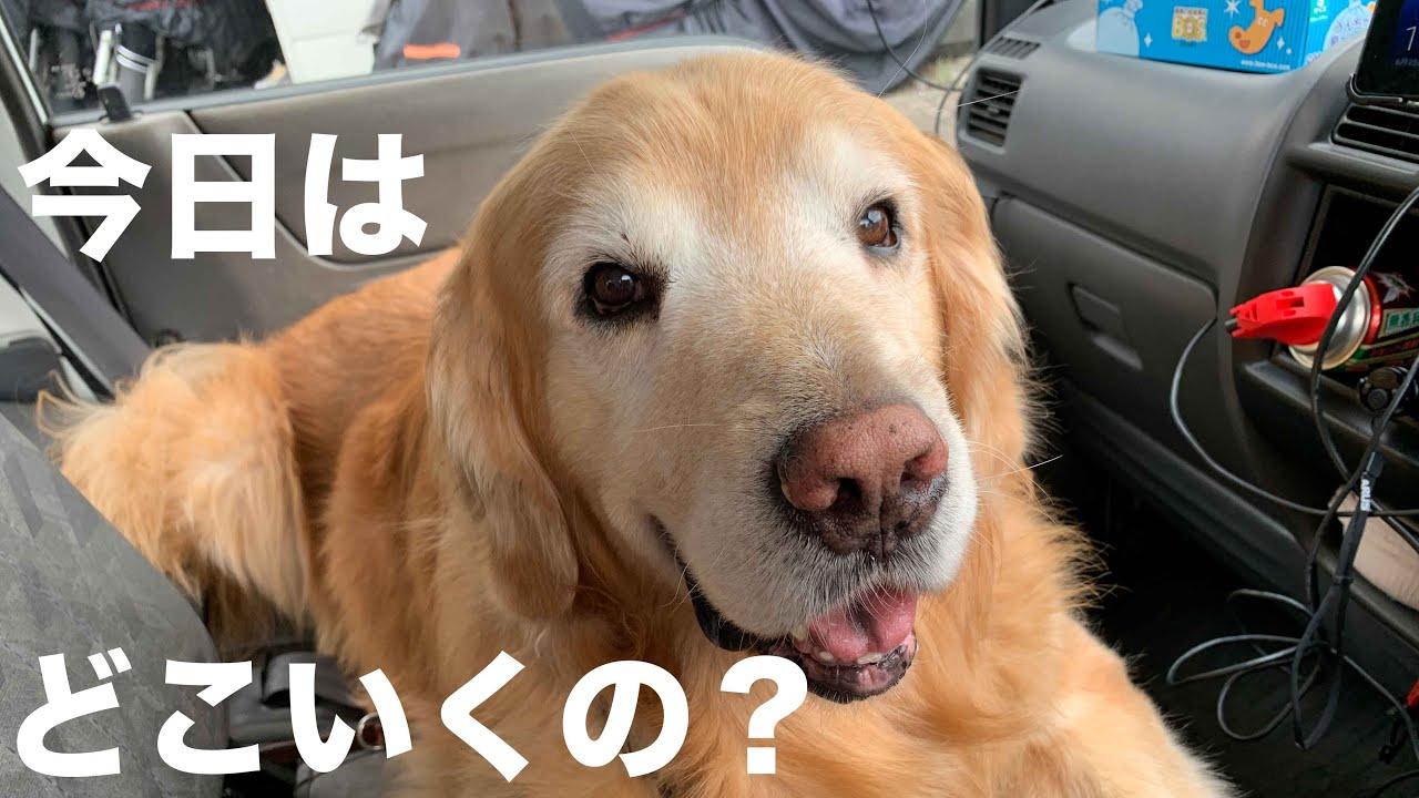 「大好き道志村!(前編)」山を走らせに行ったら大変なことになりました