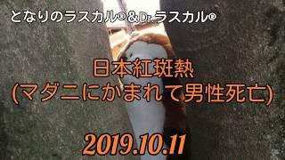 [ツイキャス] 日本紅斑熱「マダニにかまれ男性死亡」 (2019.10.11)