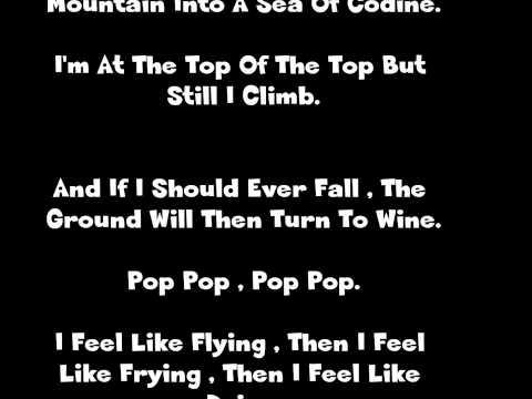 Lil' Wayne- I Feel Like Dying w/ Lyrics On Screen
