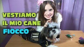 VESTIAMO IL MIO CANE FIOCCO - by Charlotte M. / DRESS MY DOG