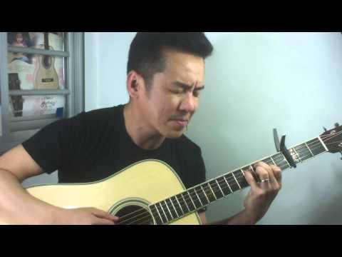 Martin D35 Seth Avett Custom Signature Edition guitar review in Singapore