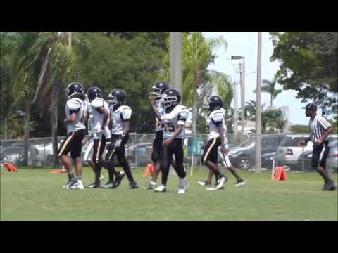 Lake Lytal Dolphins vs Steelers 2016