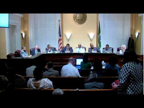 City Council Discusses Zoo