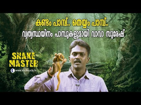 Wow ! Vava Suresh with different types of snakes | Snakemaster |  Latest episode