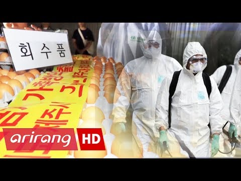 [Foreign Correspondents] Ep.50 - Pesticide-tainted eggs / Chemophobia _ Full Episode