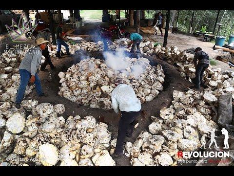 El mezcal Michoacano