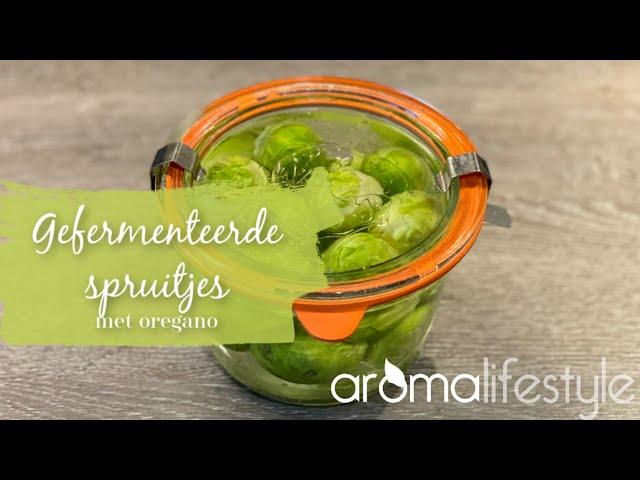 gefermenteerde spruitjes maken