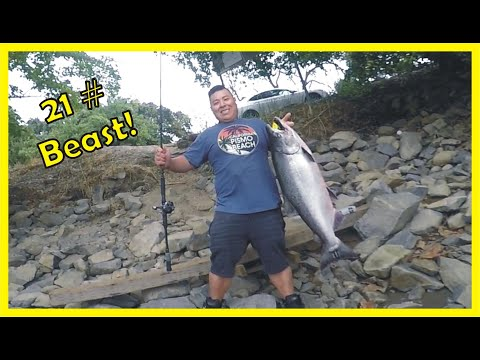 Sacramento River Salmon Fishing Report 2019: Epic Salmon Fight!