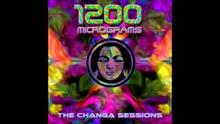 1200 Micrograms - Changa (Flute Intro)