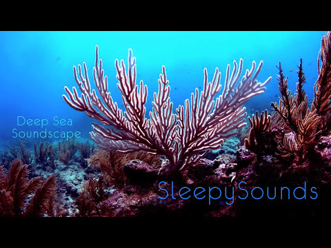 Deep Sea Soundscape – 9 hours of underwater ambience – Deep