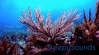 Deep Sea Soundscape – 9 hours of underwater ambience – Deep Ocean Sleep Sounds