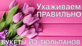 Букет тюльпанов  - ухаживаем правильно (buketberry ru)