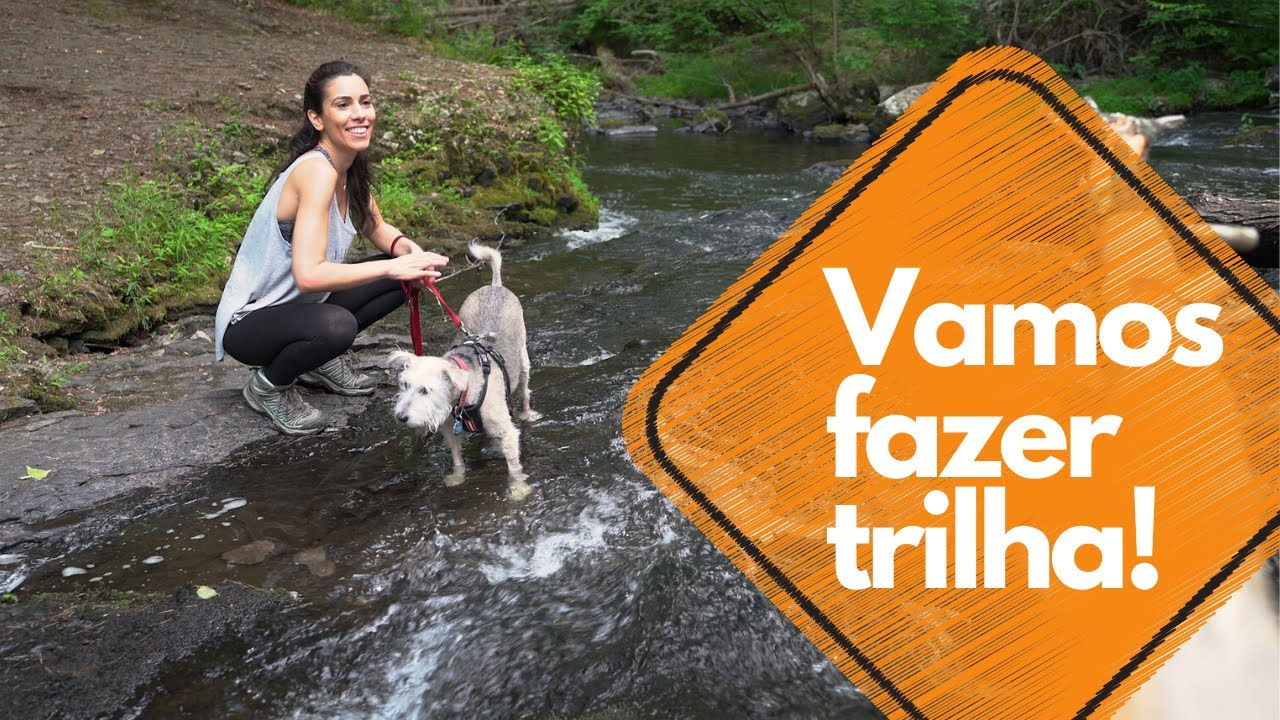 Let's go hiking! | Brazilian Portuguese Vocabulary