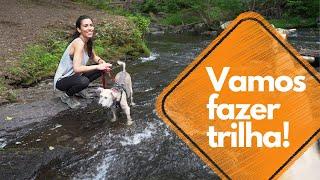 Baixar Let's go hiking!   Brazilian Portuguese Vocabulary