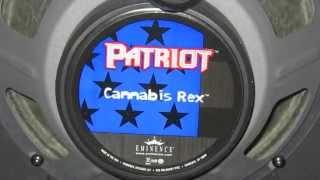 Eminence Cannabis Rex Speaker in a Blackstar HT Studio 20