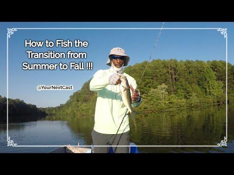 How To Fish The Transition | LAKE ORANGE