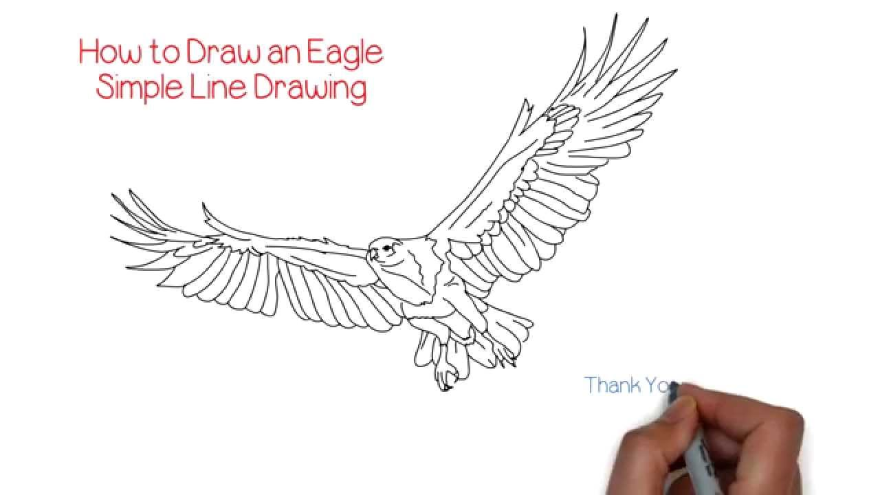 How to Draw an Eagle Simple Line Drawing | YZArts | YZArts - YouTube