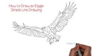 eagle line simple drawing draw