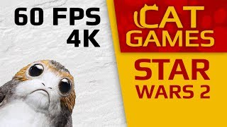 CAT GAMES - STAR WARS II (VIDEOS FOR CATS TO WATCH) 4K 60 FPS