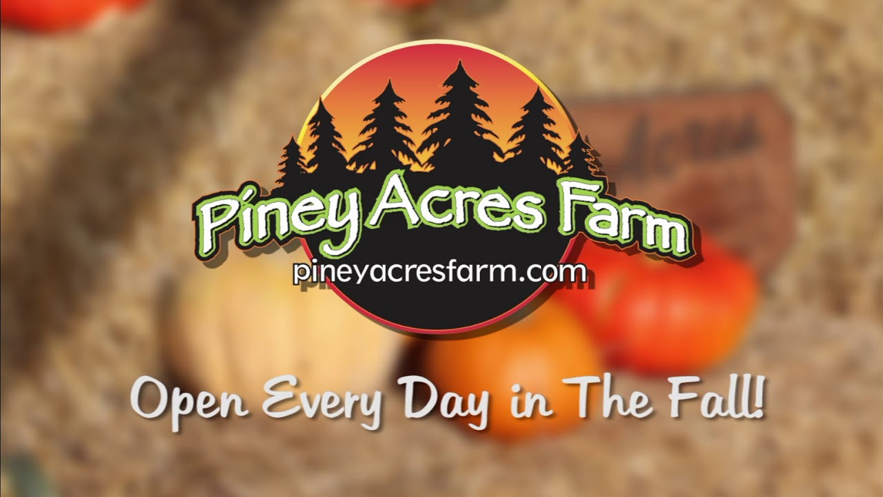 Piney Acres Farm – Where Memories Are Grown… One Tree At A Time