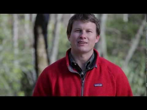 8.68 Acres | Mine Mountain | Brevard NC Land For Sale