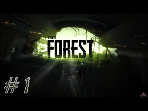 The Forest | CoOp | #1 | Crash