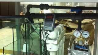 Akwarium z kominem zewnętrznym oraz sump filtracyjny Argus Aqua Design&Garden 695807066
