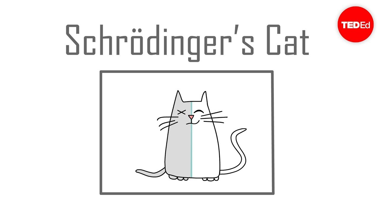 Schrödinger's cat: A thought experiment in quantum mechanics - Chad ...