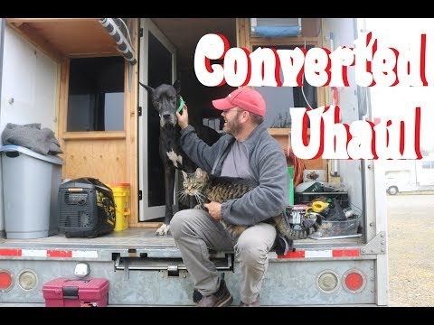 Living In A Converted  Uhaul With My Great Dane & Cat