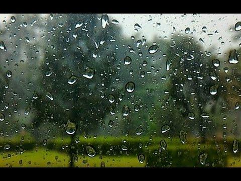 forte pluie au jardin pour dormir profond ment bruit blanc d stressant etude spa 100. Black Bedroom Furniture Sets. Home Design Ideas