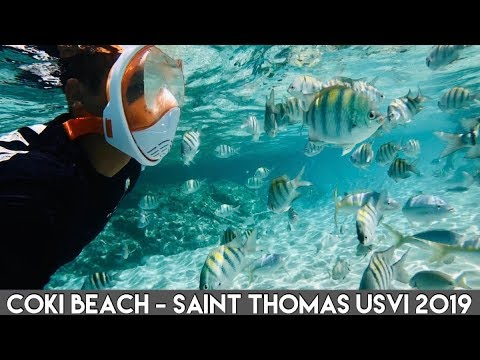 Saint Thomas US Virgin Islands (4K) - Coki Beach - Best Beach & Snorkeling