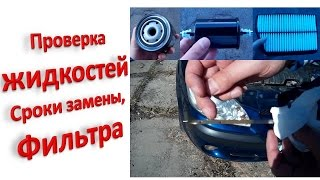 видео Особенности тормозных жидкостей
