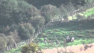 East Kent Hunt Terriermen Digout And Kill 12 October 2013