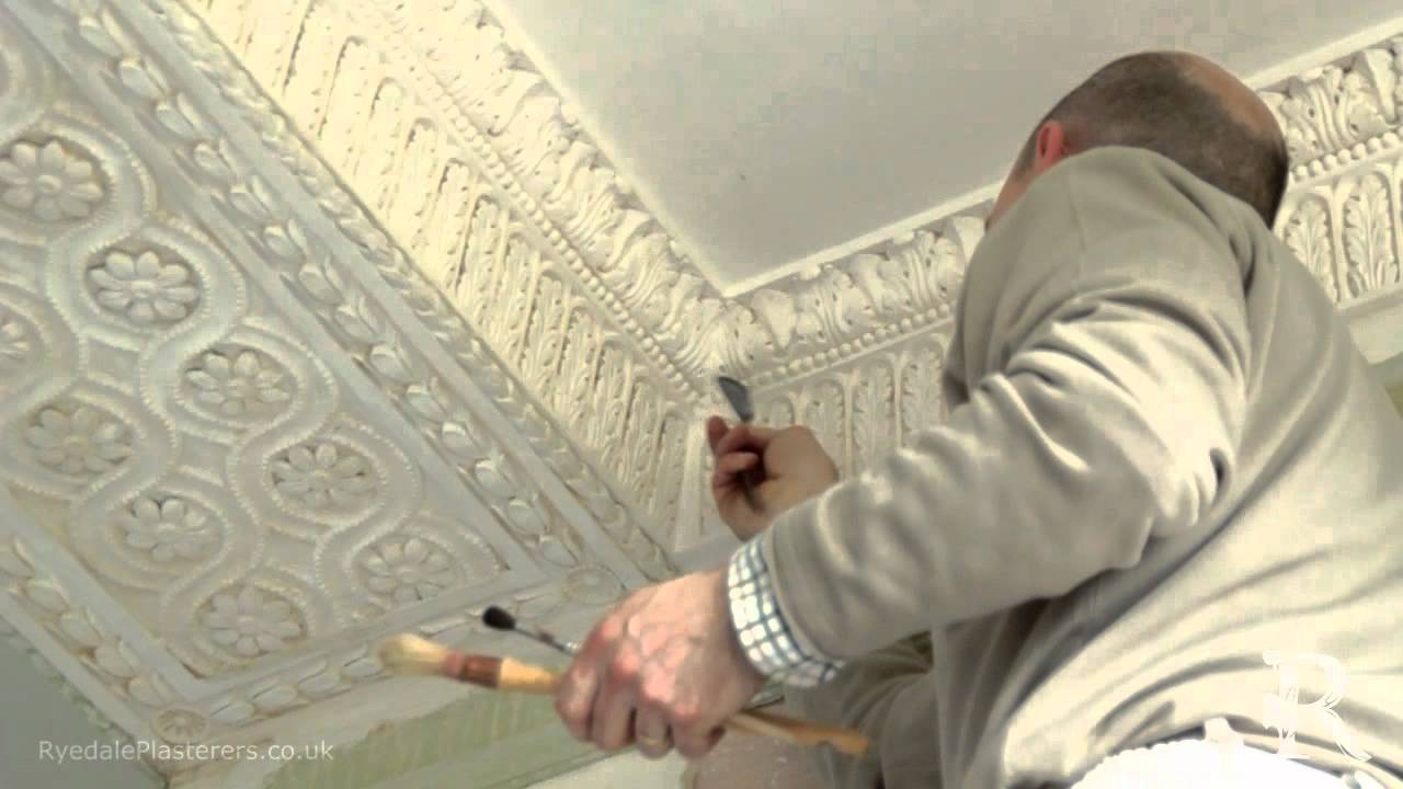 Ornate Plaster Restoration