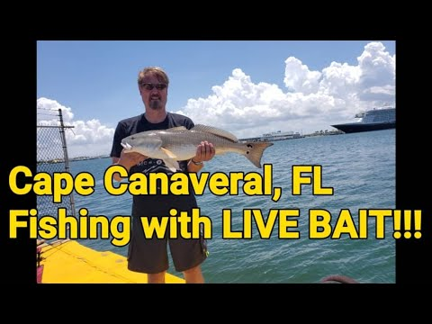 Cape Canaveral, FL: Saltwater Fishing With LIVE BAIT!!!