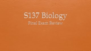 biology final View test prep - biology final essays from biology scin104 at american public university long essays 1) explain what occurs during the krebs (citric acid cycle and electron transport chain.